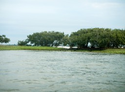 Shell Mound to Deer Island - 07