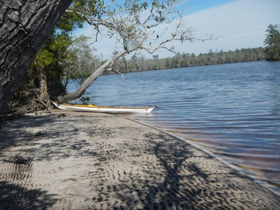 Ochlockonee River 3/21/13 - 19