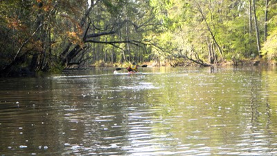Ochlockonee River 3/19/13 - 09