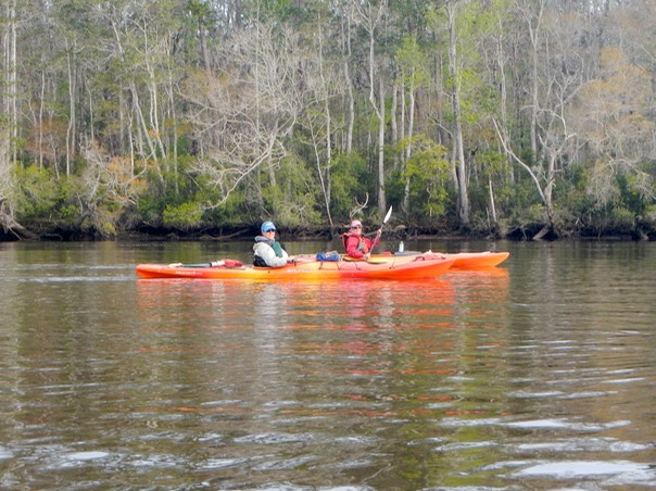 Ochlockonee River 3/21/13 - 07